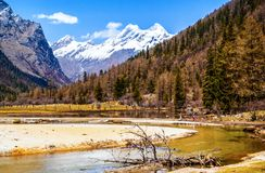 Changping valley scene of the Siguniang Mountain. Changping valler is one beautiful valler in the Siguniang Mountain. The Siguniang Mountain (Four Girls Mountain stock photo