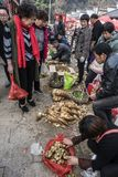 Changxing shui kou społeczności miejskiej rolników rynek Obrazy Stock