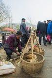 Changxing shui kou społeczności miejskiej rolników rynek Zdjęcie Royalty Free