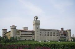 Changyu Rena del castillo francés Imágenes de archivo libres de regalías