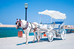 Chania carrige. Horse carriage in Chania's venetian harbour Royalty Free Stock Image