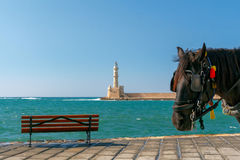 Chania. Horse-drawn carriage. Stock Photography