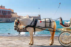Chania. Horse-drawn carriage. Royalty Free Stock Photography