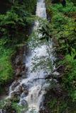 Chania Spada w Thika Kenja Afryka zdjęcie stock
