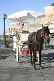 Chania tourists carriage Royalty Free Stock Photos