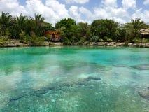 Chankanaab国家公园科苏梅尔墨西哥 免版税库存照片