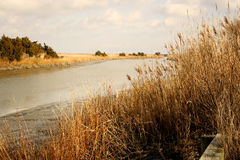 Channel. Leading out through the marsh and sea oats to Delaware Bay Stock Photography