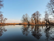 Channel with beautiful trees reflection, Lithuanian landscape Royalty Free Stock Images