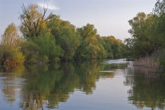 Channel in the Danube Delta Stock Photography