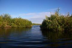 Channel in the Danube Delta, Romania. A small channel in the Danube Delta, Romania royalty free stock photography