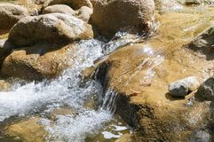 Clean mountain river Royalty Free Stock Images