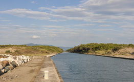 Channel of San Rossore Regional Park, Italy Stock Photo
