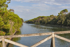 Channel of San Rossore Regional Park, Italy Stock Image