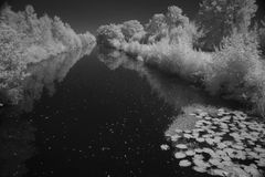 Channel with trees photographed in infrared Royalty Free Stock Image