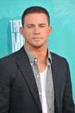 Channing Tatum Stock Photo