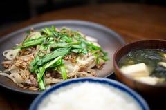 chanpurÅ japonês de SÅmen da culinária ? Imagens de Stock Royalty Free