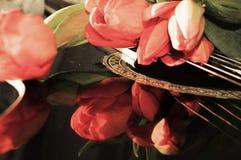 Chansons et réflexions de tulipe, symboles Images libres de droits