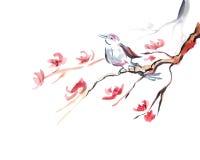 chant d'oiseau Photo libre de droits