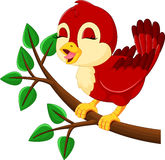 Chant mignon d'oiseau illustration de vecteur