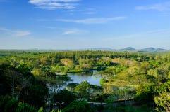 Chantaburi森林在泰国 免版税库存图片
