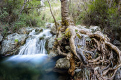 Chantara falls in the troodos mountains 3. The first stage of the chantara falls in the troodos mountains Royalty Free Stock Image