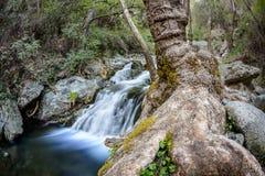 Chantara falls in the troodos mountains 5 Royalty Free Stock Image