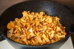 Chantarelles в сковороде Стоковая Фотография RF