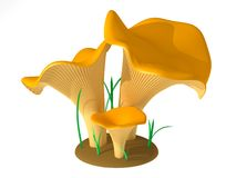 Chanterelle. The three-dimensional, cartoon image of chanterelle. The background white, on a background is not present shadows Stock Illustration