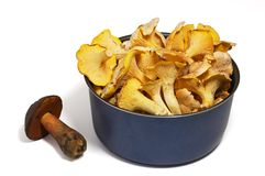 Chanterelle and boletus. Closeup of pan of chanterellies and boletus mushroom on white background with shadow. Edible mushrooms: Chanterelle (Cantharellus royalty free stock image