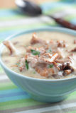 Chanterelle cream soup Royalty Free Stock Photos