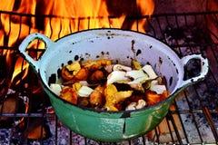 Chanterelle et champignon de Porcini photographie stock libre de droits