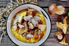 Chanterelle et champignon de Porcini photos stock
