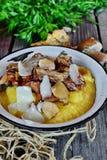Chanterelle et champignon de Porcini image libre de droits