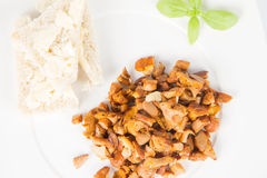 Chanterelle with garlic. Sauteed chanterelle with garlic and some white bread on a plate decorated with basil Royalty Free Stock Images