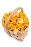 Chanterelle mushrooms in basket Stock Photos