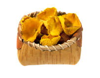 Chanterelle mushrooms  in basket Royalty Free Stock Photography