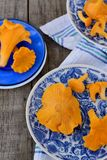 Chanterelle mushrooms in blue plates Royalty Free Stock Photo
