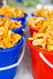Chanterelle mushrooms in buckets Royalty Free Stock Photos