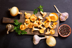 Chanterelle mushrooms with fresh vegetables for cooking Stock Image