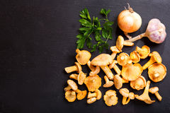 Chanterelle mushrooms with fresh vegetables for cooking Royalty Free Stock Photos
