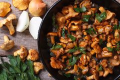 Chanterelle mushrooms with onion and parsley  in a pan top view Royalty Free Stock Photography