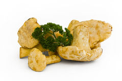 Chanterelle mushrooms with parsley. On white background stock photo