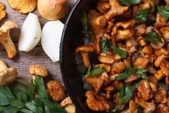 Chanterelle mushrooms with vegetables in a frying pan top view Royalty Free Stock Image