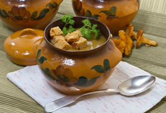 Chanterelle soup puree Stock Photos