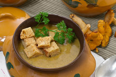 Chanterelle soup puree Stock Photo