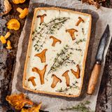 Chanterelle and Thyme Tart Stock Images