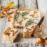 Chanterelle and Thyme Tart Stock Image