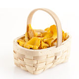 Chanterelles. Fresh golden chanterelles piled on the table royalty free stock images