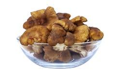 Chanterelles. Chanterellea in glass bowl (cantharellus cibarius Royalty Free Stock Photos