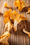 Chanterelles d'or sur les planches en bois Photo libre de droits